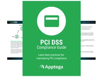 PCI DSS Compliance Guide
