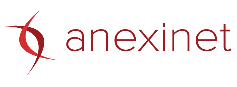 Anexinet logo