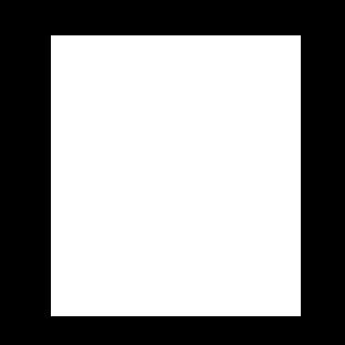 CCPA Framework Icon White