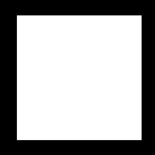 HIPAA Framework Icon White